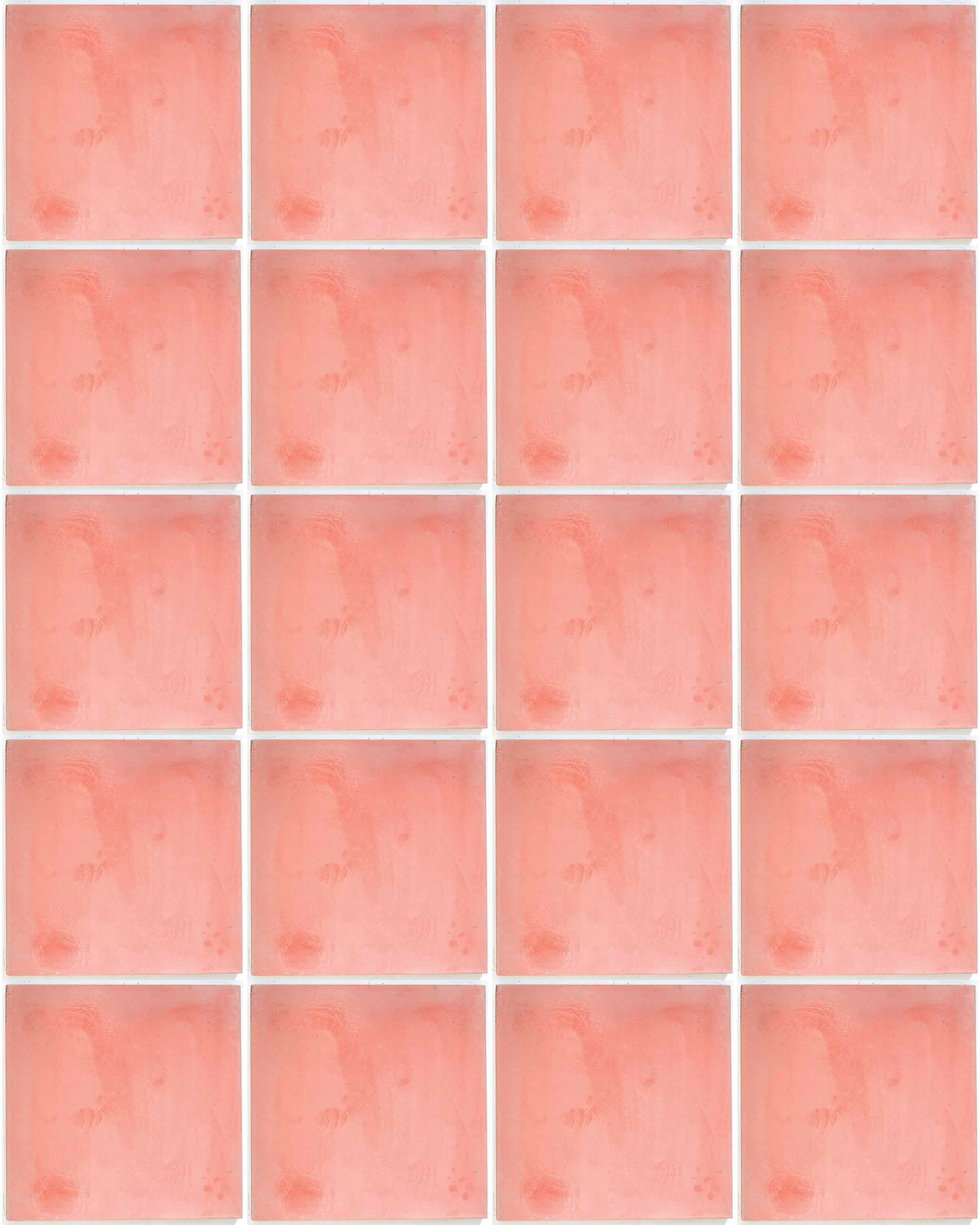 Spanish pink encaustic tile milagros pink hand made encaustic floor tiles dailygadgetfo Choice Image